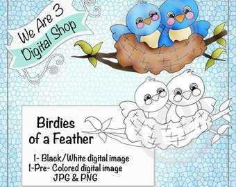 We Are 3 Digital Shop, Birdies of a Feather,  Includes Pre-Colored Printable, Digital Image, Bird