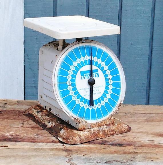 Vintage Blue Kitchen Scale Montgomery Ward Scale Retro