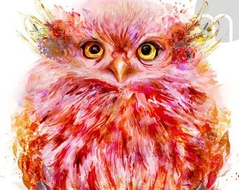 "Adorable Owl Painting ""Coral"" Mixed Media Wall Decor Art Canvas Gallery Wrap"