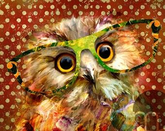 Quincy Owl