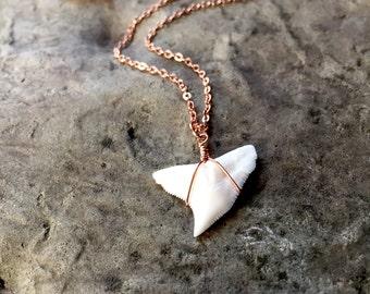 Dainty Shark Tooth Necklace, Shark Tooth, Sharks Tooth Necklace, Rose Gold Necklace, Dainty Rose Gold Necklace Dainty Rose Gold Gift for her