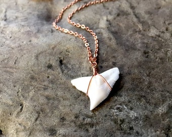 Rose Gold Shark Tooth Necklace, Dainty Shark Tooth Necklace, Rose Gold Necklace, Dainty Gold Necklace, Shark, Shark Week, Sharks Tooth,