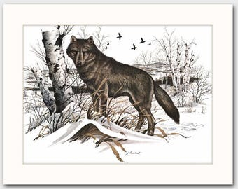 """Grey Timber Wolf Art w/Mat (Office Artwork, Rustic Wall Decor) """"Alpha Male"""" -- Vintage Matted"""