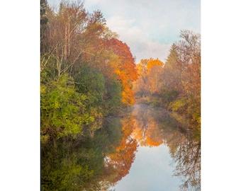 fall wall art, fall wall decor, Cazenovia, fall trees art, fall artwork, nature photography, autumn leaves, fall foliage, fall trees