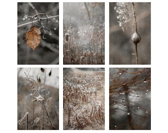 Set of Nature Art Prints, Neutral Gallery Wall Set, Set of 6 prints, Nature Wall Set, hygge decor