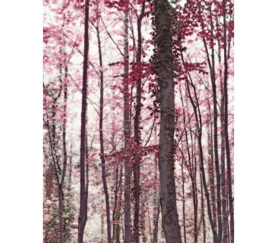Marron Automne Forêt repro panoramique toile Wall Art Print Art