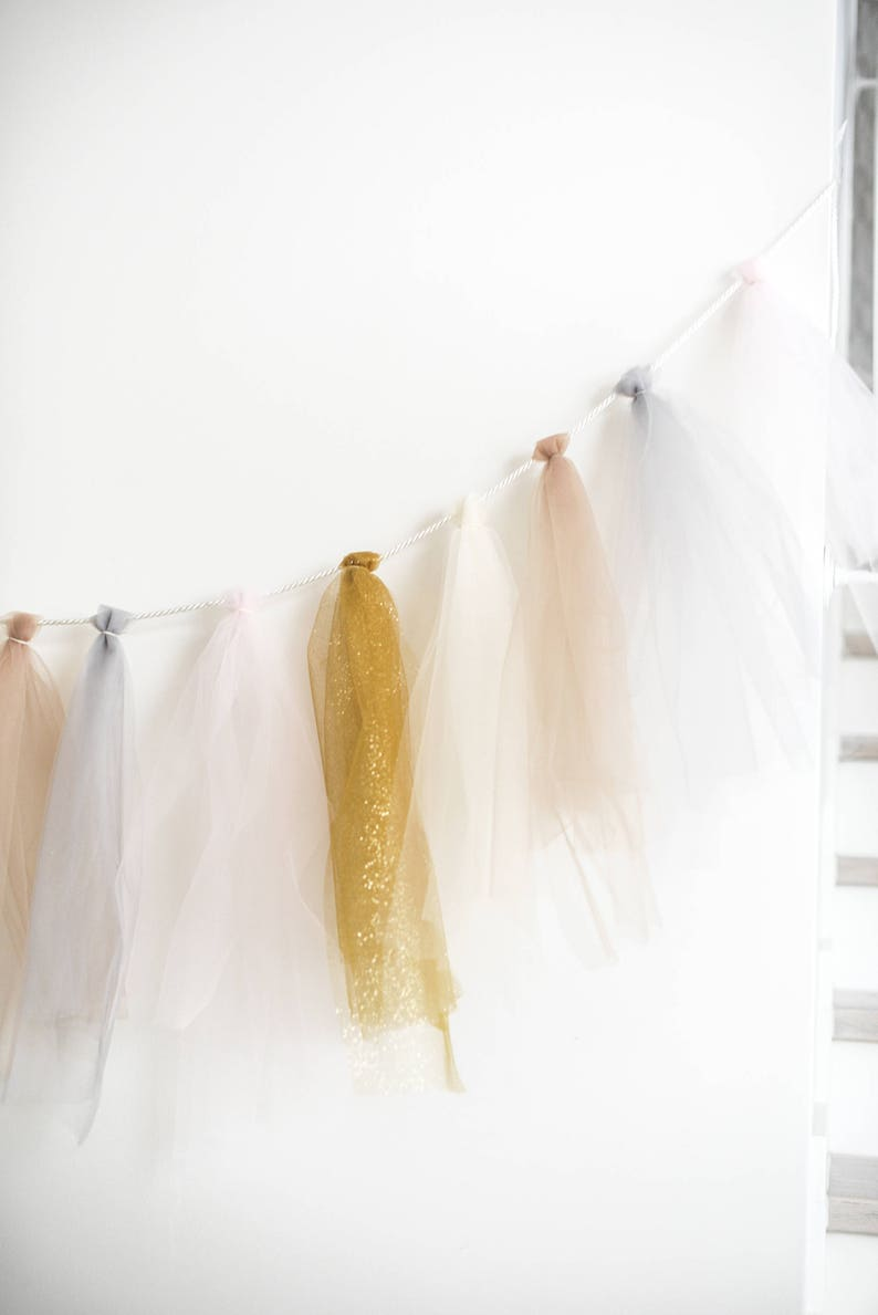 Blue//Silver Party Banner Tassel Tulle