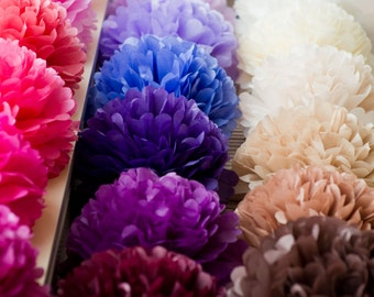 5 large tissue Pom Poms -  - pick your colors- wedding party decorations - nursery decor