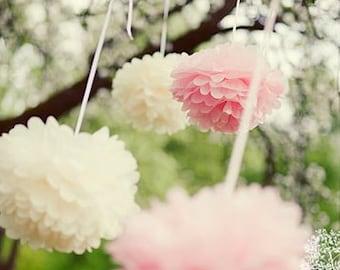 Tissue paper Pompoms set of 60   Paper flowers   Wedding decoration set   Hanging pom poms