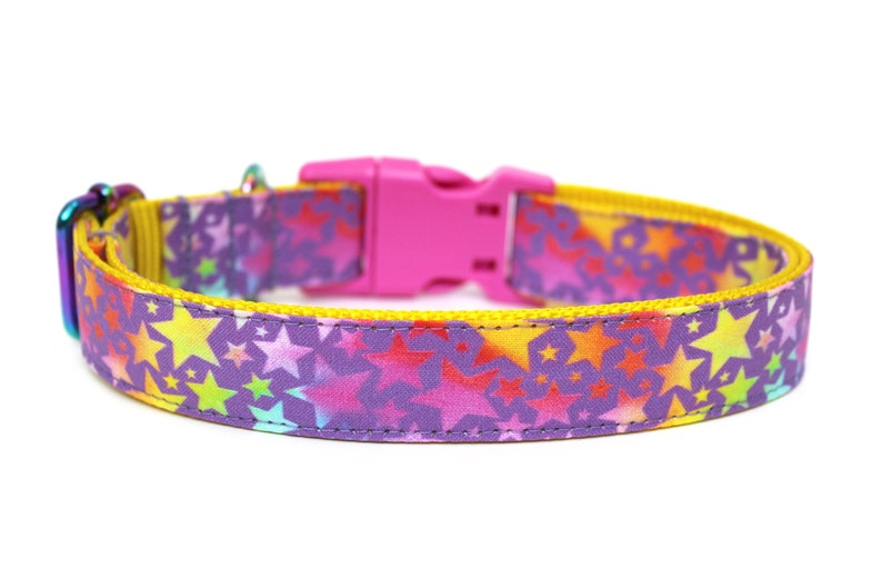 Rainbow Dog Collar 1 Star Dog Collar image 0