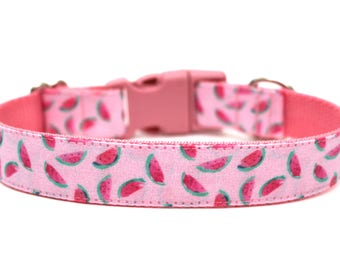 "Watermelon Dog Collar 1"" Summer Dog Collar"
