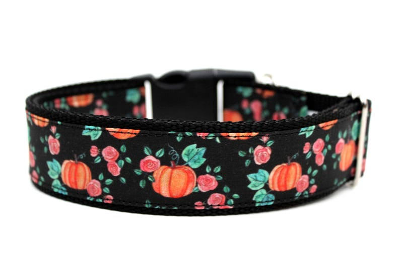 Pumpkin Dog Collar 1 or 1.5 Fall Dog Collar image 0