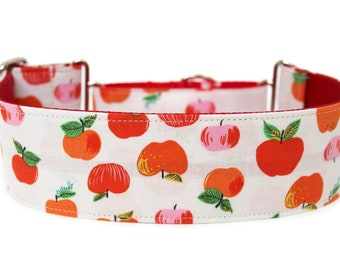 """Apple Dog Collar 2"""" wide Martingale Dog Collar for Large Breed Dogs"""