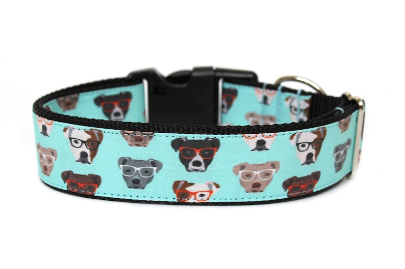 Bully Dog Collar 1  or 1.5 Pitbull Dog Collar image 0