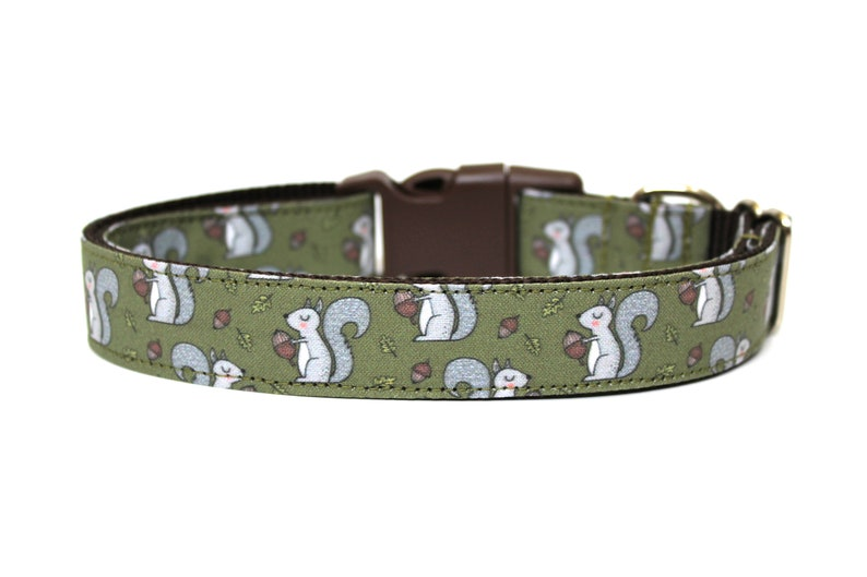 Squirrel Dog Collar 1 Fall Dog Collar image 0