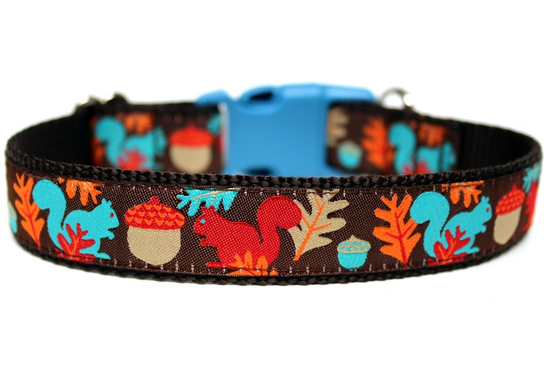Squirrel Dog Collar 1 Fall Dog Collar image 0