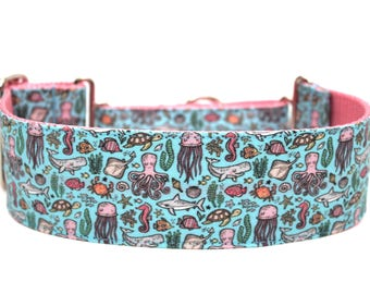 """Summer Dog Collar 2"""" wide Martingale Dog Collar for Large Breed Dogs"""