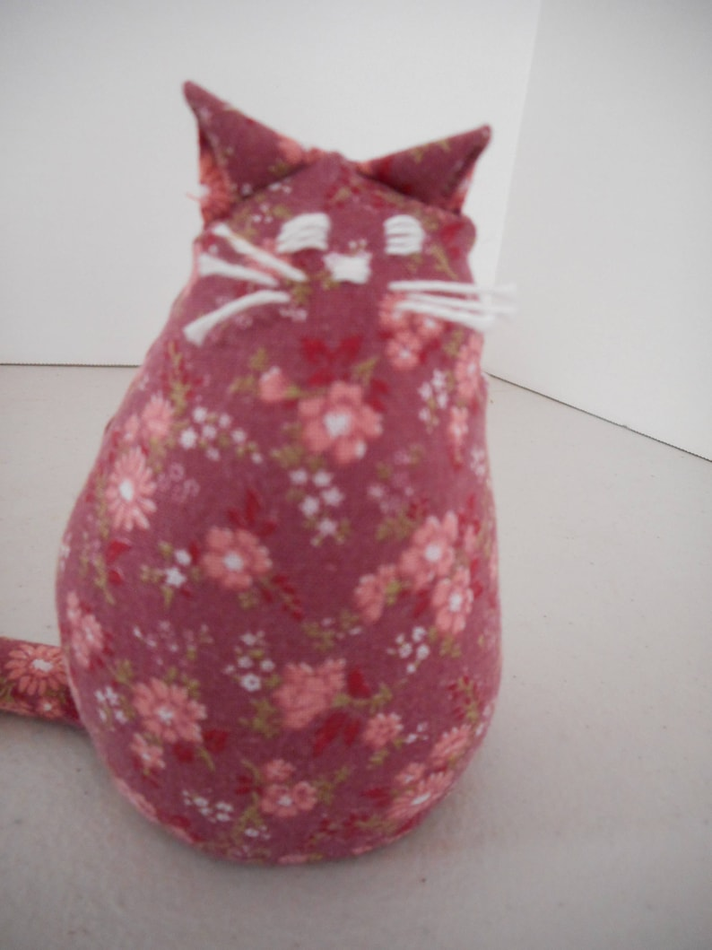 Can My Cat Have Little A Salami - toxoplasmosis
