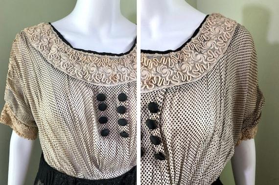 Amazing Edwardian Dress with overskirt - image 3