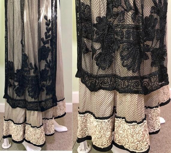 Amazing Edwardian Dress with overskirt - image 5