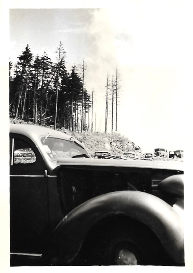 Vintage Snapshot Forest Fire Abstract Photo Landscape Dramatic Close Up Vintage Car Black White Found Vernacular Photo