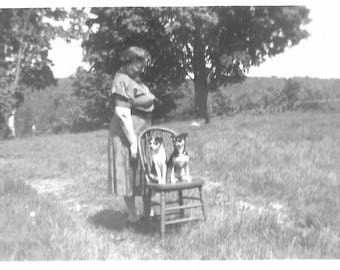 """Vintage Snapshot """"Well-Behaved Pups"""" Puppy Dogs Sitting On A Wooden Chair Original Black & White Found Photo Vernacular Photography"""