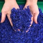Blue Cornflower Petals, USA Grown, by the bowl
