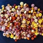 100 Dried Strawflower Heads, Grown in USA
