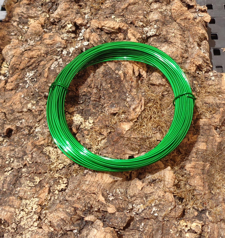 Tillandsia Wire-Green | Etsy