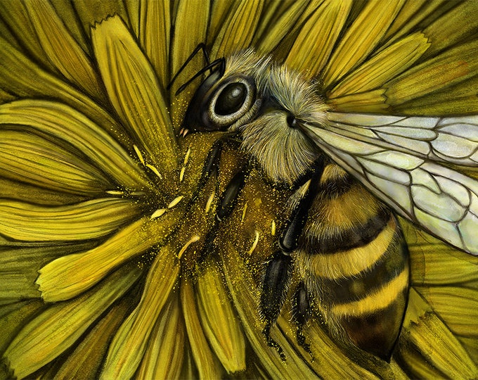 Bee and Dandelion Greeting Card, Sustainable, pollinator