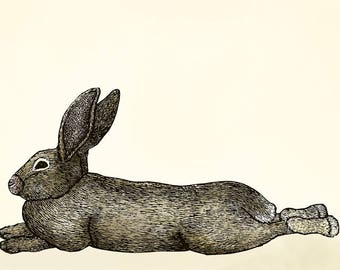 Lounging Bunny Card