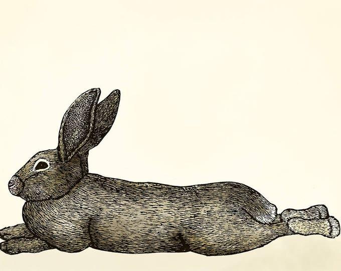 Lounging Bunny Card