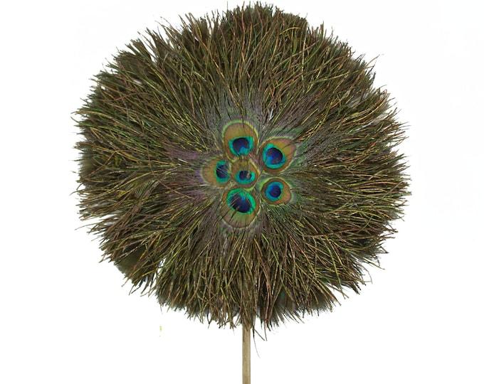 1920s Peacock Feather Fan