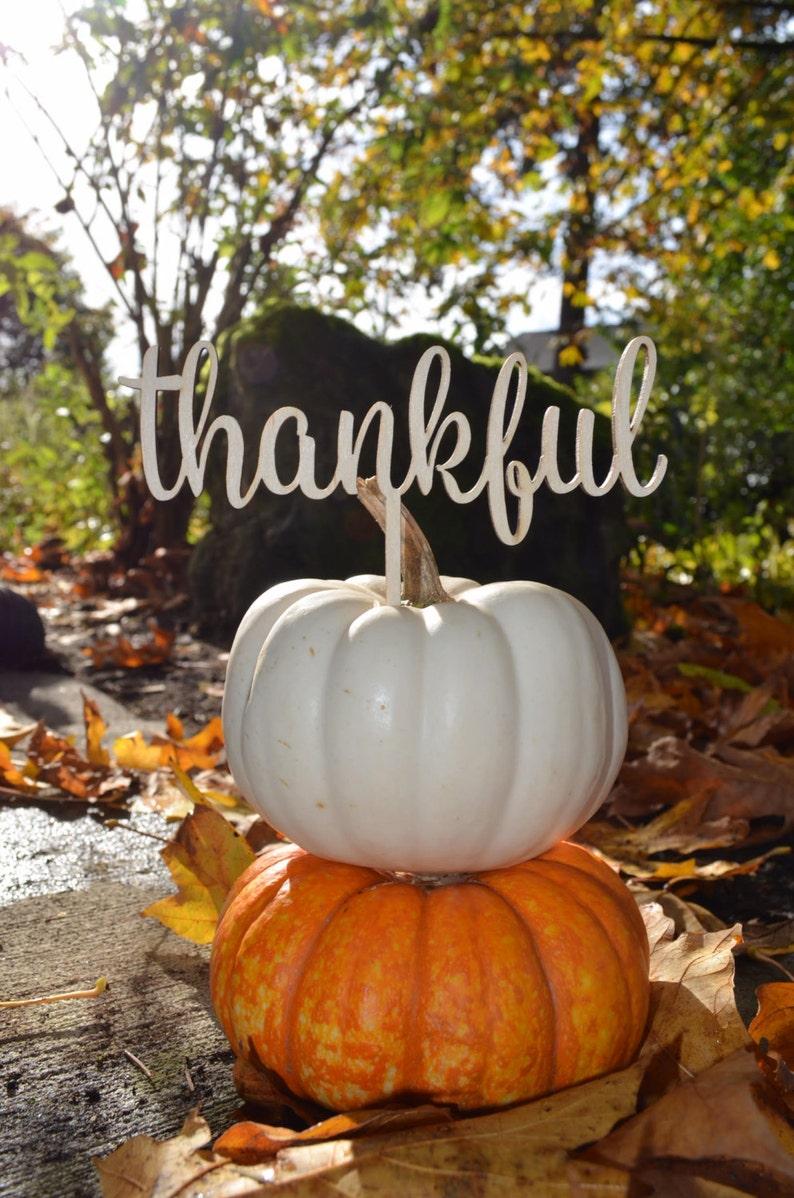 Thankful Thanksgiving decoration Thankful cake topper fall image 0