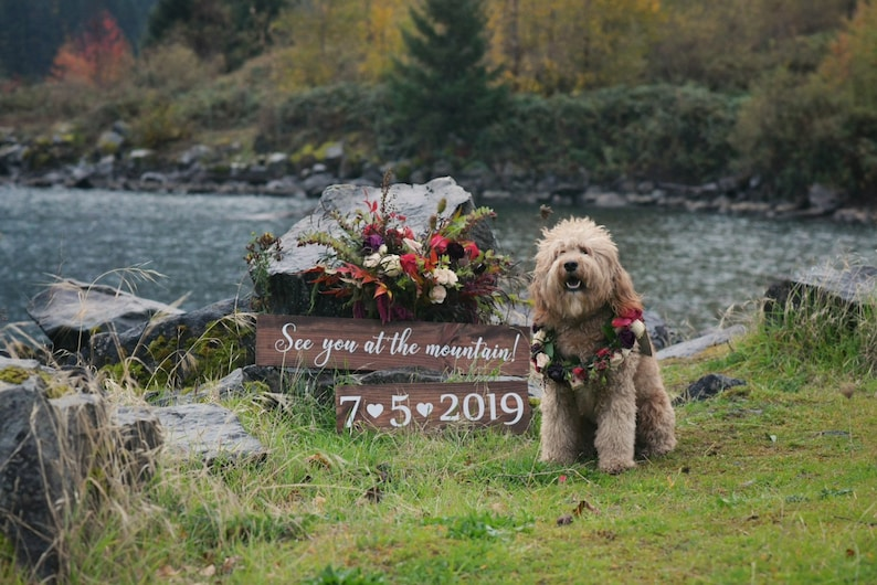 Rustic Save the Date Sign Wedding Signs Wedding Date Signs image 0
