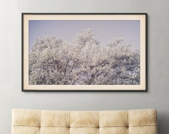 Morning Blossoms Print | Soft Flowers Tree Pink Blue Dreamy Photography