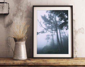 Trees in Fog Print | Nature, Tree Photography, Wall Art, Wall Decor, Mysterious, Woodland, Forest, Woods
