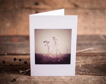 Harvest Greeting Card | Nature, Fall, Dormant, Seed Pod, Harvest, Seasons, Fall, Brown, Calming,