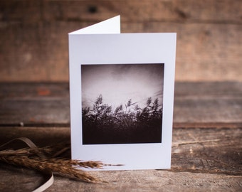 Reeds Greeting Card | Nature, Autumn, Field, Reeds, Dusk, Sepia, Landscape, Mysterious, Moody