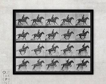 Eadweard Muybridge photography, Vintage Black & White Art Photography, Horse in Motion, Eadweard Muybridge horse in motion print