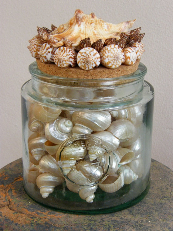 Large Recycled Glass Jar with seashells top - for bathroom, kitchen, or any home decoration location.