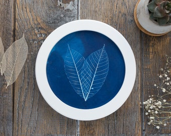 Original botanical cyanotype in a round frame, wall art