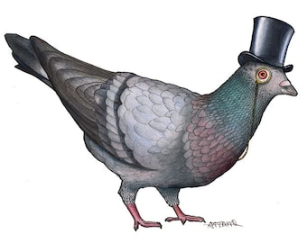 Pigeon in a Top Hat: A4 Print