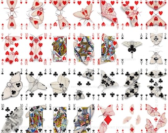 UNCUT SHEET - Cryptic Cards Full Deck Uncut Sheet - Playing Card Art of Cryptic Moths