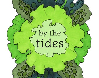 By the tides - A5 colour zine on finding beauty in nature - seashore, seaweed, shells, rock-pools, tide-pools, full color zines