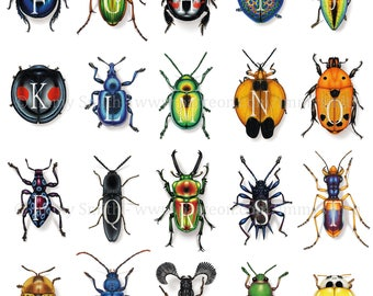 AlphaBeetles Door Poster - Every Letter plus Key to Beetle Species - Insects, SciArt, Science & Art, Coleoptera, Initials, Letters