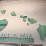 Hawaiian Islands Wallhanging Upcycled Art