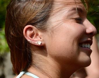 Hawaiian Islands Climber Earring Set