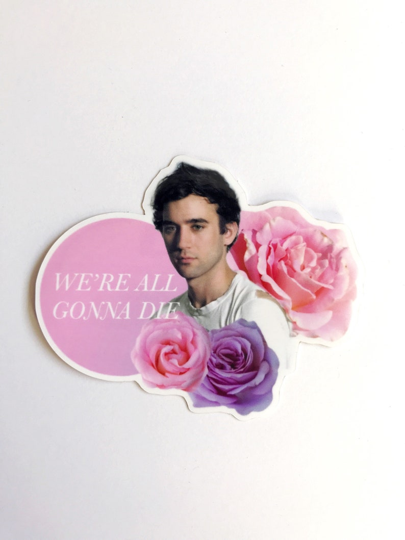 Boyfriend Series: Sufjan Stevens vinyl sticker   Etsy