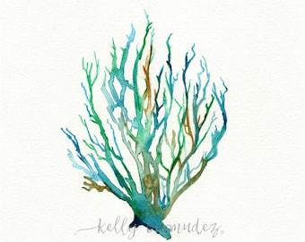 Wall Art, Watercolor Coral, Coral Art, No. 11 Sea Coral,  Watercolor print, Coral painting, bathroom wall art, watercolor wall art